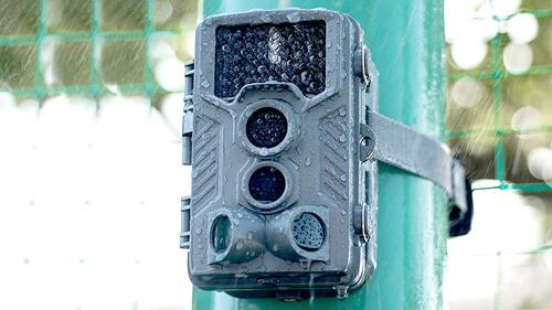 トレイルカメラの防塵防水レベルで選ぶ