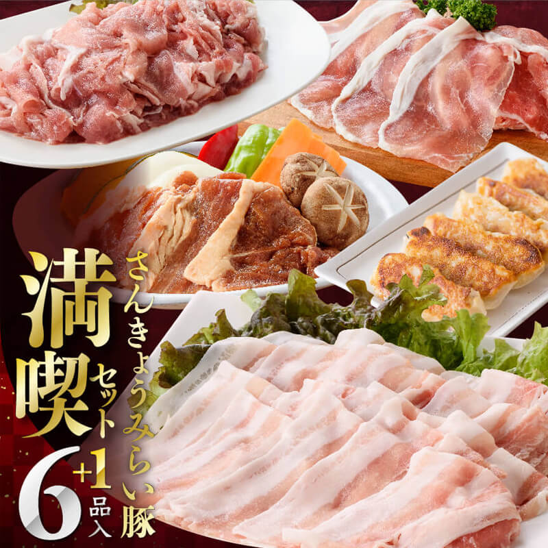ふるさと納税 さんきょうみらい豚満喫セット 宮崎県川南町
