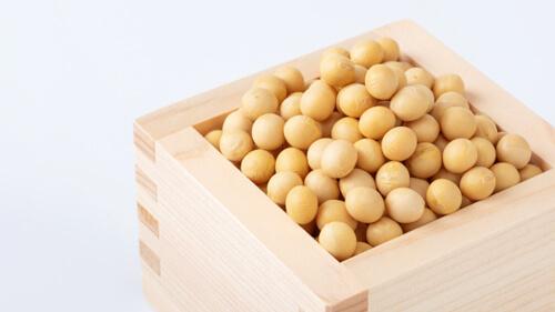 粉納豆 大豆の原産国で選ぶ