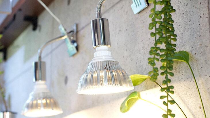 植物育成LEDライトのおすすめ人気ランキング10選!おしゃれなLEDライトも!