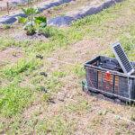 ソーラー式電気柵セットのおすすめ人気ランキング5選!おすすめメーカーや設置時の注意点も!