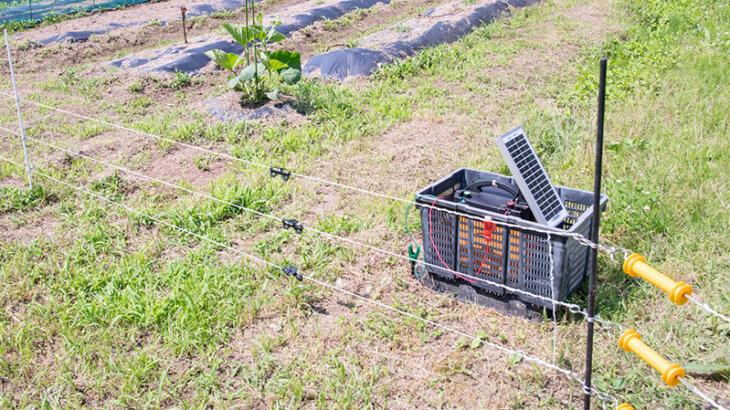 ソーラー式電気柵セットのおすすめ人気ランキング5選 おすすめメーカーや設置時の注意点も